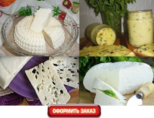домашний сыр с зеленью с молоком